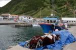 Fischer von Ribeira Quente wollen zweite Mole