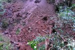 Wieder Erdrutsch auf Sao Miguel
