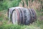 Weinernte der Azoren 2010 fällt miserabel aus