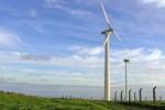 Größter Windpark der Azoren soll bis September am Netz sein