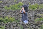 Azoren-Wein mit drei geschützten Herkunftsgebieten