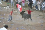 Stierkampfsaison auf den Azoren hat wieder begonnen