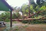 Azoren ziehen offizielle Schadensbilanz nach Hurricane Gordon