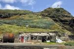 Alte Walverarbeitungsfabrik auf Santa Maria soll verkauft werden