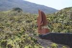 Noch mehr Service für Pico-Bergsteiger