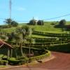 91 Grill- und Rastplätze auf den Azoren