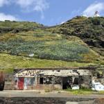 alte Walverarbeitungsfabrik an der Ponta do Castelo; Foto: Roman Martin